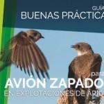 Guía de buenas prácticas para el avión zapador en explotaciones de áridos