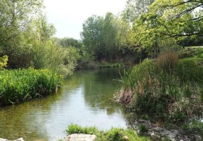 Río Palancia. Ríos con vida