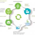 Plásticos para la Economía Circular
