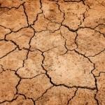 El desarrollo sostenible centrará la IV Asamblea de Medio Ambiente de la ONU