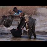 Life Invasaqua: comunicar y formar sobre especies exóticas invasoras acuáticas