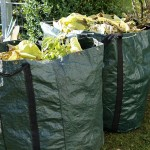 La Comunidad Valenciana basa su Plan de Residuos en la economía circular