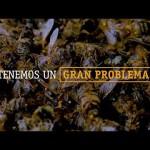 Imagina un mundo sin abejas…