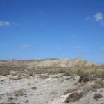 La desertificación se puede combatir con reforestación y consumo responsable