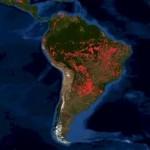 El Amazonas, en estado de emergencia por los incendios forestales