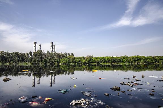 La combinación de algas y bacterias podría descontaminar aguas residuales y producir hidrógeno