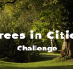 treesincities