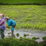 ¿Son las mujeres más vulnerables a la crisis climática?
