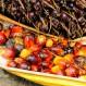 alternativa sostenible aceite de palma