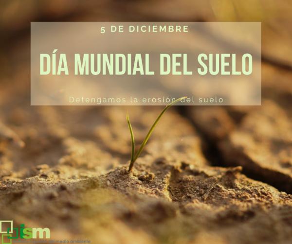 dia mundial del suelo