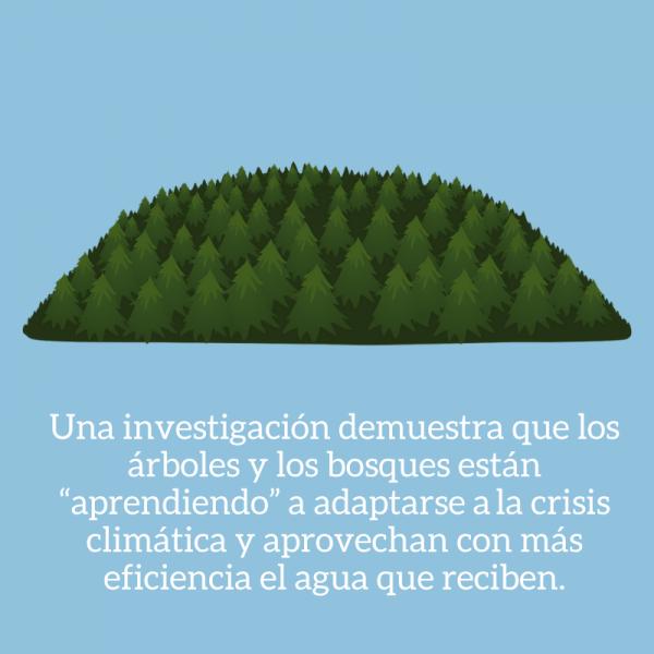 noticias medio ambiente