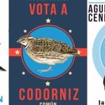 SEO/BirdLife y Zerynthia buscan especies del año para promulgar su estudio y conservación