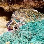 España creará una estrategia nacional de pesca de basuras ante la avalancha de desperdicios que llega al mar