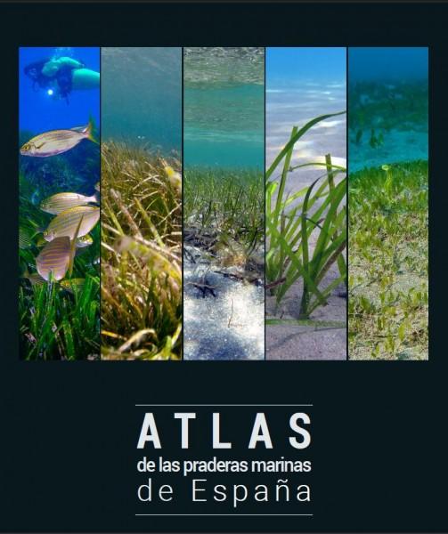 atlas praderas marinas españa