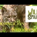 Wild Spain – Conoce los Espacios Naturales de España
