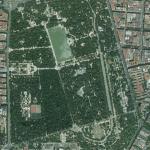 """Madrid y Arroyomolinos, distinguidas como """"ciudades arbóreas del mundo"""" en 2019 por la FAO"""