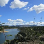 Agenda de Ocio Ambiental 21 – 23 de febrero