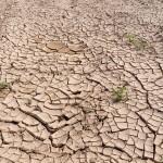 La crisis sanitaria del Covid-19 pone en el punto de mira la escasez de agua en el planeta