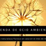Agenda de ocio ambiental: La naturaleza florece en casa en el mes de mayo