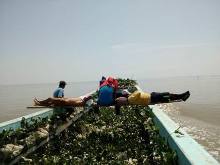 ambientólogo en latinoamérica