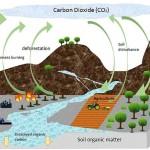 Categorías de emisiones de GEI: directas e indirectas por energía importada