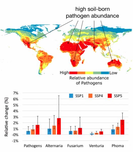 abundancia de patogenos en el futuro