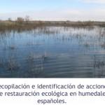 Recopilación e identificación de acciones de restauración ecológica en humedales españoles