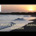 Wild Spain: Paraje Natural Punta Entinas-Sabinar, Almería