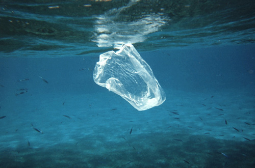 Día Internacional Sin Bolsas de Plástico