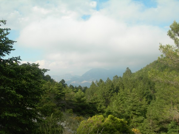Parque Nacional de la Sierra de las Nieves