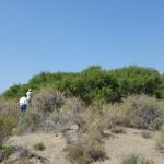 Un estudio demuestra el éxito de hacer ciencia en colaboración con la población local para promover la conservación de la biodiversidad