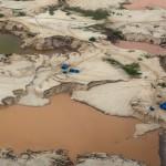 ¿Se pueden recuperar los bosques destruidos por la minería de oro en Madre de Dios (Perú)?