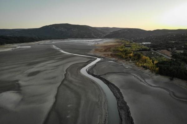 ecologistas demandan al estado