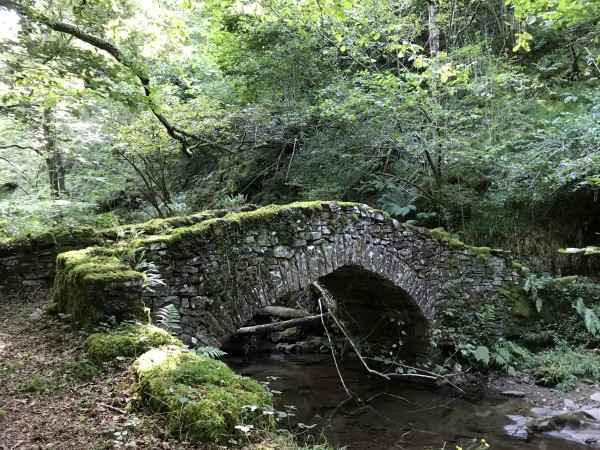 puentes rucabao
