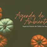 Agenda de Ocio Ambiental del 30 de octubre al 2 de noviembre