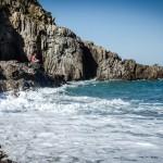 Estudian la conectividad ecológica entre ecosistemas Atlántico y Mediterráneo