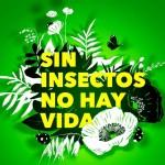 Los insectos sufren una extinción hasta ocho veces más rápida que otras especies