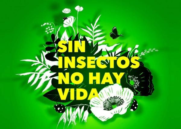 sin-insectos-no-hay-vida