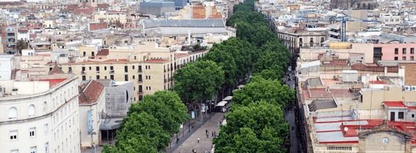 Proyecto Alcorques Vivos en Barcelona