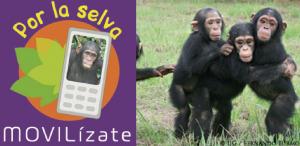 Movilizate-por-la-selva