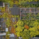 Green City Accord, el acuerdo lanzado por la CE para crear ciudades más sostenibles