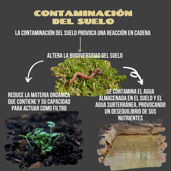 contaminación suelo