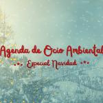 Agenda de Ocio Ambiental: Especial Navidad