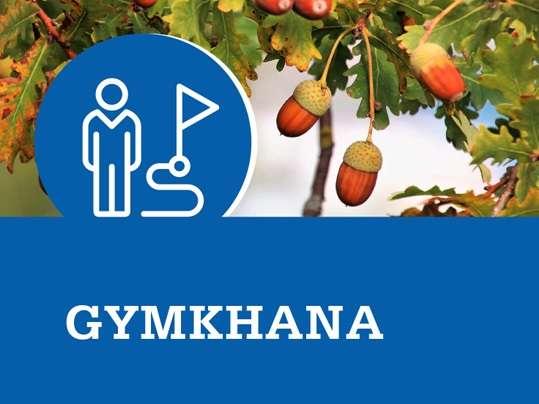 Gymkhana gijon