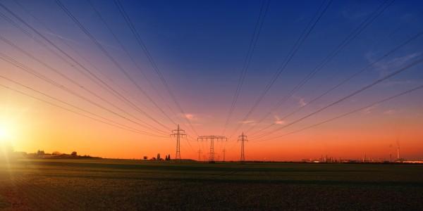 La sugerencia del equipo del CSIC apunta que modificar la base de las torres eléctricas facilitaría potencialmente la conexión de poblaciones