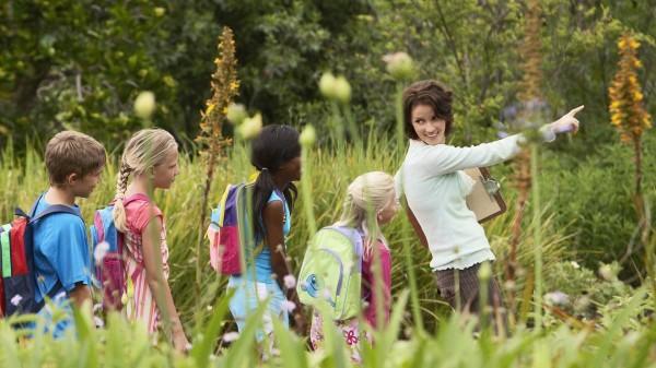 educacion-ambiental- seo