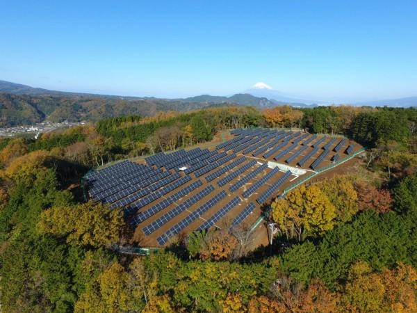 energia solar biodiversidad