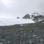 Analizan lo que ocurre en los suelos polares cuando el hielo desaparece