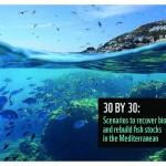30 para el 30: Escenarios para recuperar la biodiversidad y las poblaciones de peces en el Mediterráneo