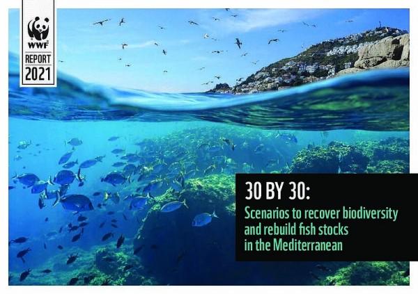 30x30 contaminación marina